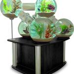 moduliniai akvariumai